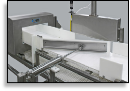 Advantage Conveyor Inspection Amp Metal Detectors